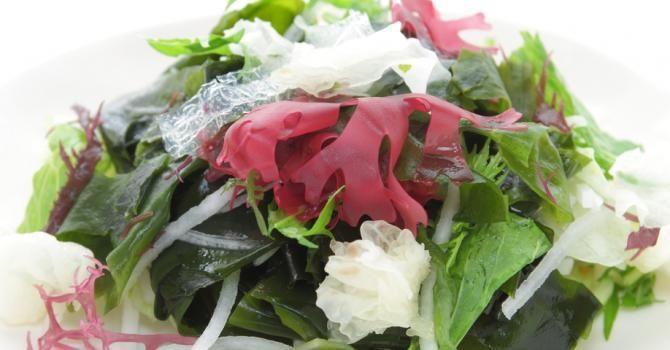 Agar-agar, une algue d'Asie qui nous veut du bien