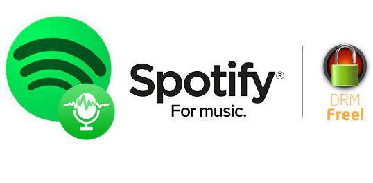 noteburner spotify music converter review | Spotify | Music