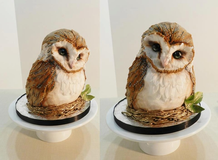 Amazing Owl Cake by The Cake Whisperer in Canada