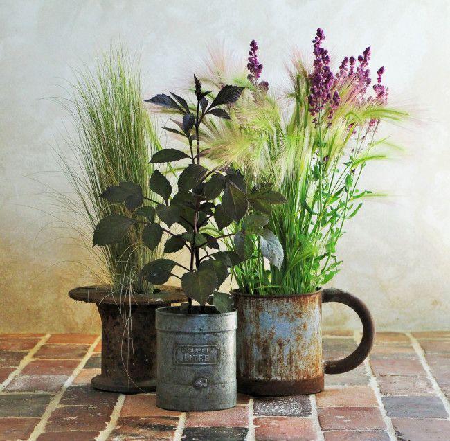 43 Best Bouquets Fleurs Du Jardin Images On Pinterest Flowers Floral Arrangements And Flower