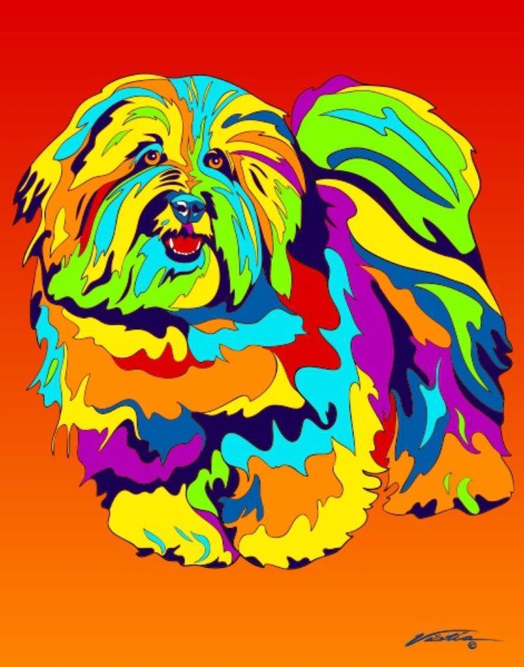 Multi-Color Coton de Tuléar Dog Breed Matted Prints & Canvas Giclées