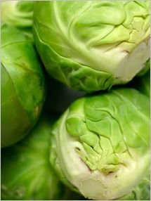 Brussels Sprouts Jan.