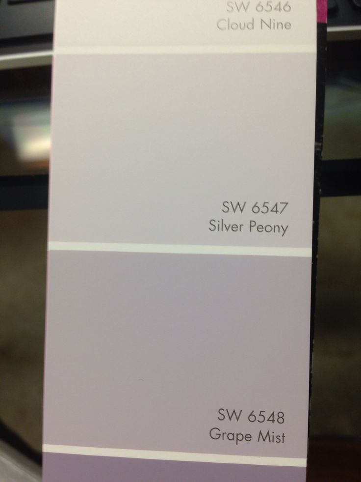 Silver Peony Sherwin Williams Paint Colors Pinterest