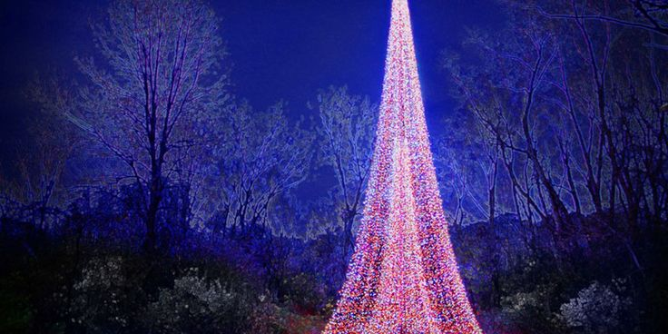 Green Bay Garden Of Lights 101 Best Green Bay Wi  Titletown Usa Images On Pinterest
