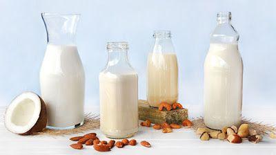Receitas Saudáveis: Leites Vegetais-I parte