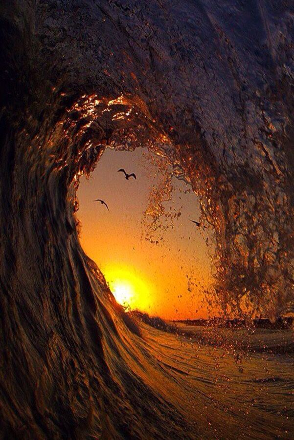 "robert-dcosta: "" Golden Wave 