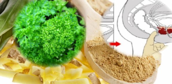 Plant Better Than Chemotherapy -It Destroys Prostate, Colon And Ovarian Cancer