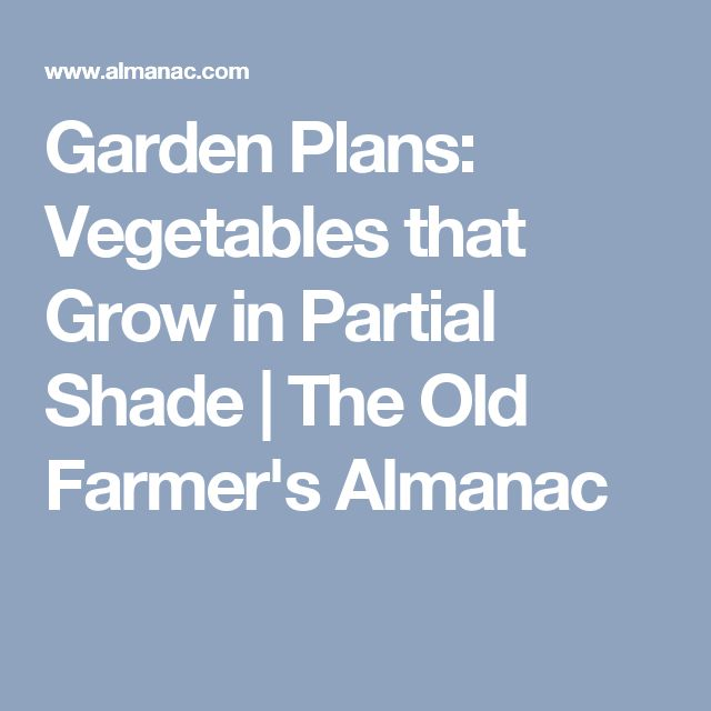 Garden Plans: Vegetables that Grow in Partial Shade | The Old Farmer's Almanac