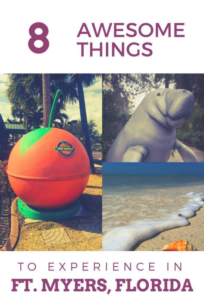 Hidden Gems In Ft Myers Florida Florida Travel Fort Myers