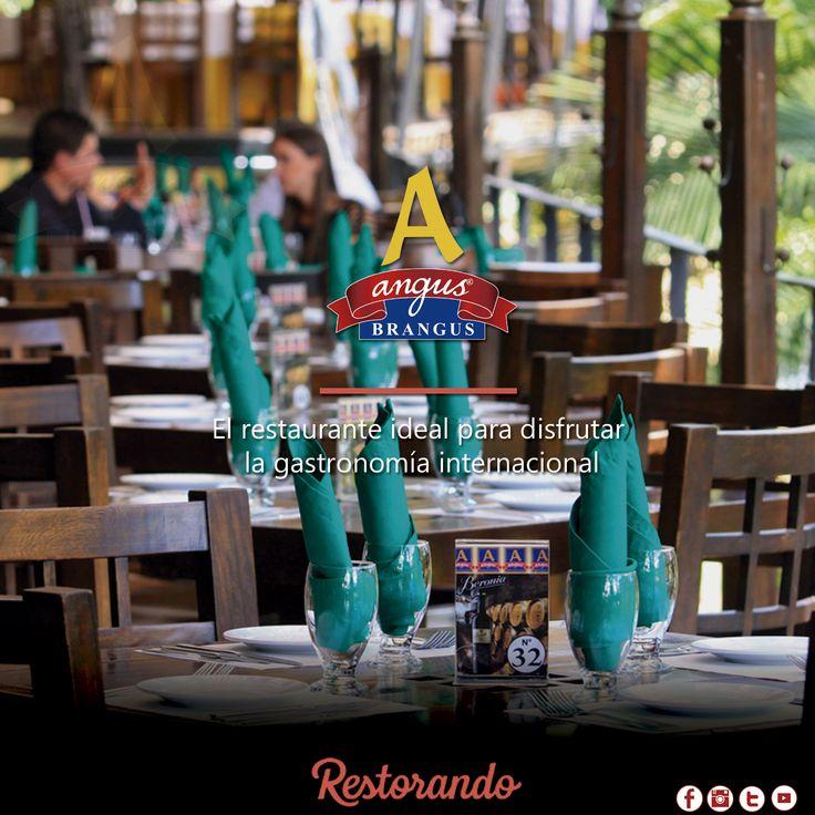 Reserva tu mesa en Angus Brangus Parrilla Bar  y disfruta la exquisita gastronomía internacional que te ofrecemos  con nuestro menú. Reserva a través de RestorandoColombia  .    Cra. 42 # 34 - 15 / Km 1 Vía las Palmas.    #Medellin #RestaurantesMedellin #restorando #Gastronomía #reservatumesa #colombia #descuentos #dondecomermedellín #restaurantesrecomendados #medellintown #medellincity #medellineats #parrilla #recomendadosmedellin