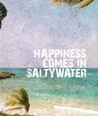 Happiness comes in salty water.Summer Vacations, Happy Quotes, The Ocean, At The Beach, Life A Beach, Salty Water, Beach Vacations, Travel Quotes, Beach Life