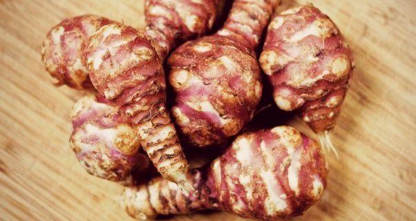 Il Topinambur è il miglior tubero curativo per l'intestino e lo stomaco. Protegge il cuore e rafforza i capelli. Ecco i suoi benefici e come cucinarlo