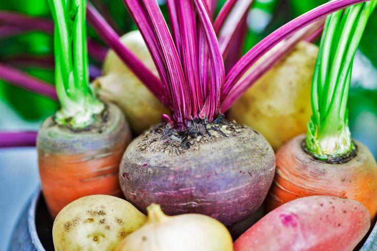 Die Knollen liegen wieder voll im Trend! Wurzelgemüse wie Möhren, Rote Beete, Pastinaken, Steckrüben und Petersilienwurzel sind nämlich schmackhaft und sehr gesund. Mit diesen Tipps bereitest du sie richtig zu.