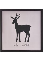 Taulu Antilooppi