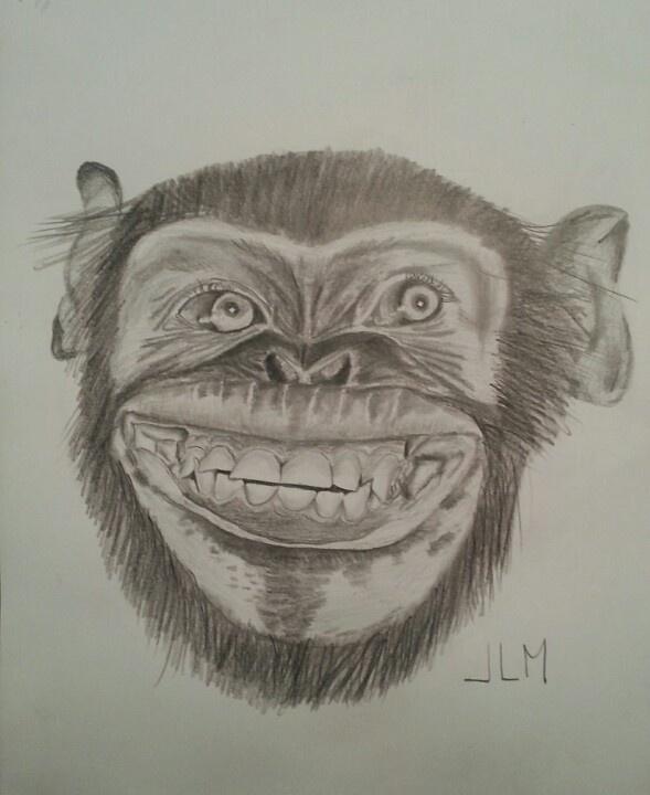 Chimpance sonriente