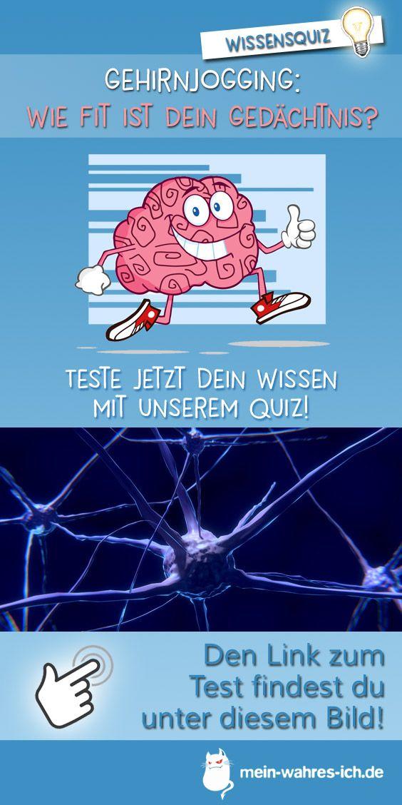Gehirn Quiz