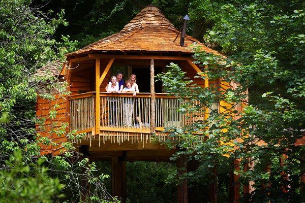 The Golden Oak Treehouse at Deerpark, Cornwall  #ukbreak #forestretreat