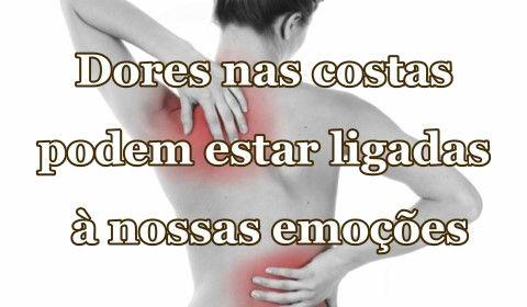 Acupuntura em São José SC - Vico Massagista: Massagem Terapêutica, Massoterapia e Quiropraxia: Dores nas costas e as relações entre as vértebras,...