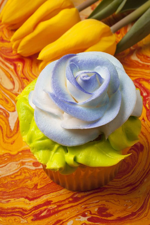 Blue rose cup cake Photograph  - Blue rose cup cake Fine Art Print
