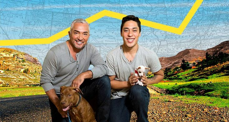 Dog Nation with Cesar and Andre Millan