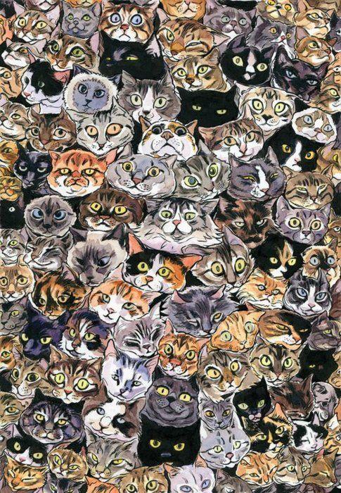 catsKitty Cat, Cat Painting, Pattern, Catlady, Art, Crazy Cat, Cat Illustration, Kittycat, Cat Lady