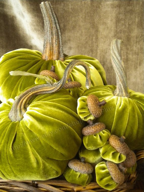 Velvet PUMPKINS & Velvet ACORNS - Real Pumpkin Stems and Real Acorn Caps - Shimmery Olive Green