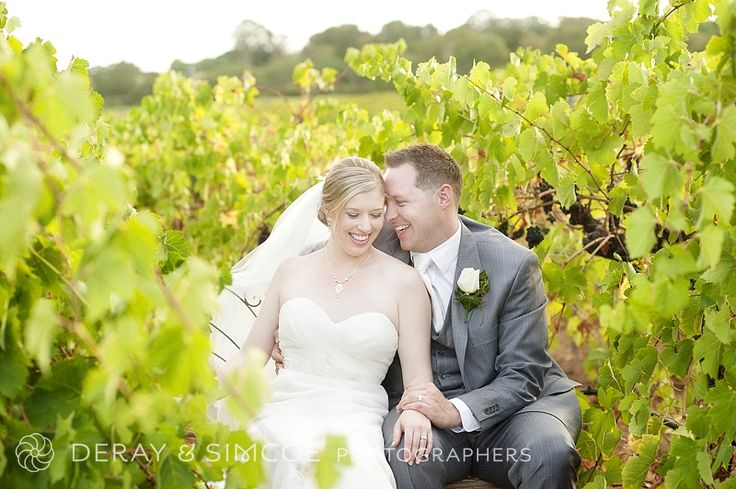 Beautiful couple photos in the vineyard. Winery wedding
