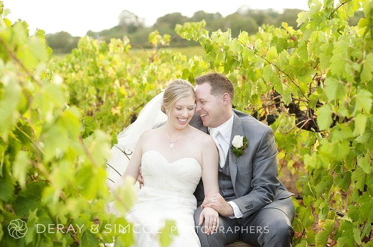 Beautiful couple photos in the vineyard. Winery wedding