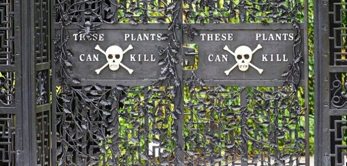 Alnwick Gardens – And Filled with Poison Plants Can Kill