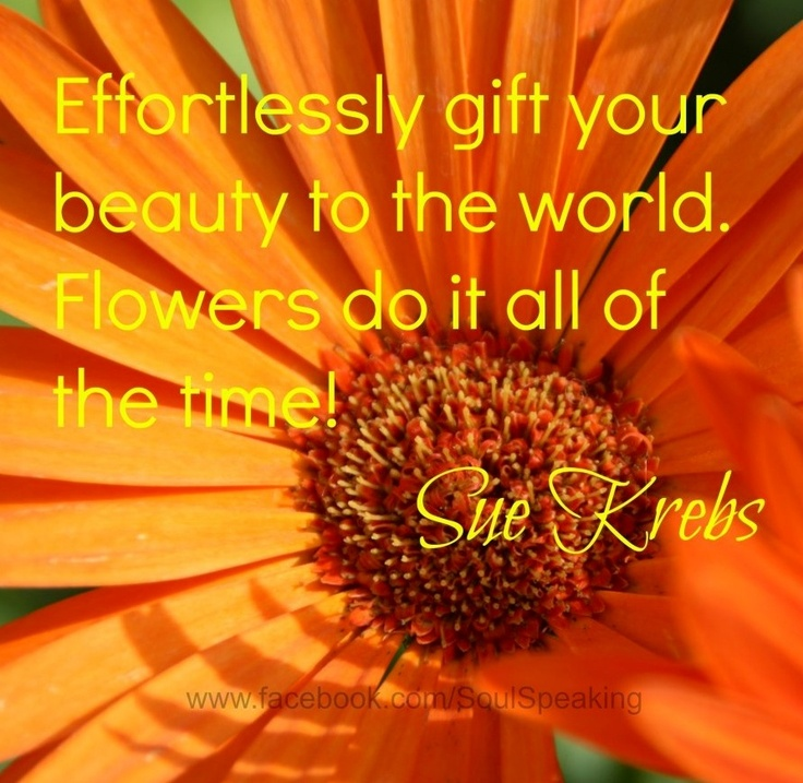 89 Best Images About ♡ Flower & Bloom Quotes ♡ On