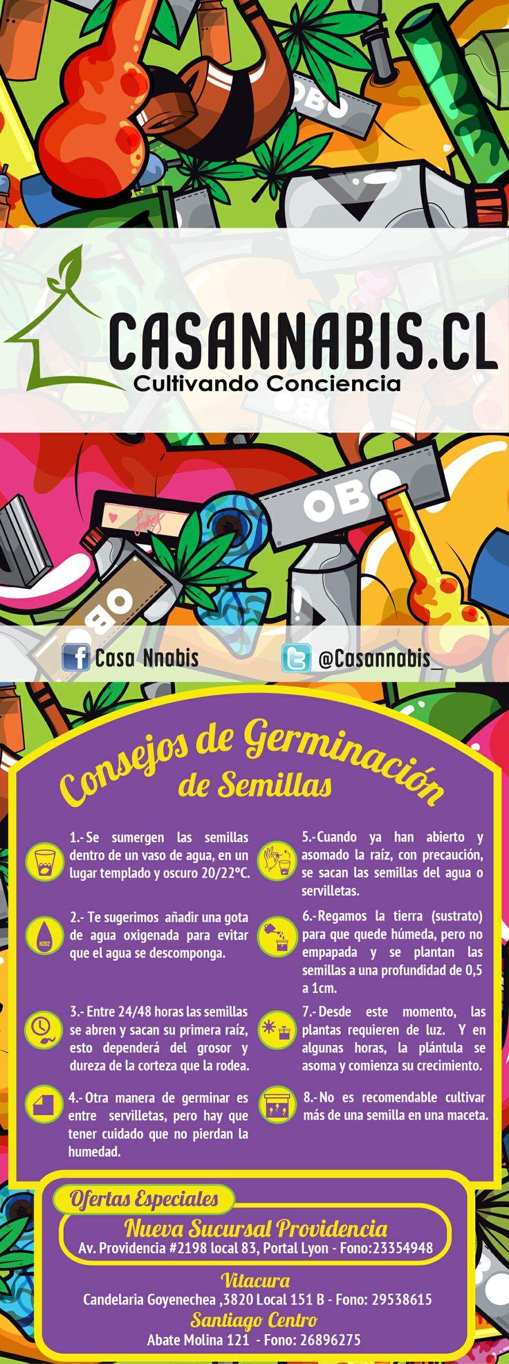 "Boquillas Casannabis ""Consejos para Germinar"""