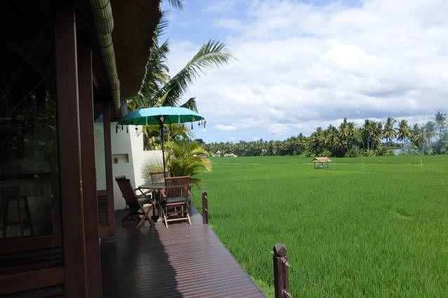 Bali Harmony Villas - deck views from your private villa!  #Ubud #baliharmonyvillas #balivilla http://baliharmonyvilla.com/