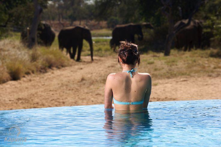 Pampering with a view at Kapama River Lodge Spa