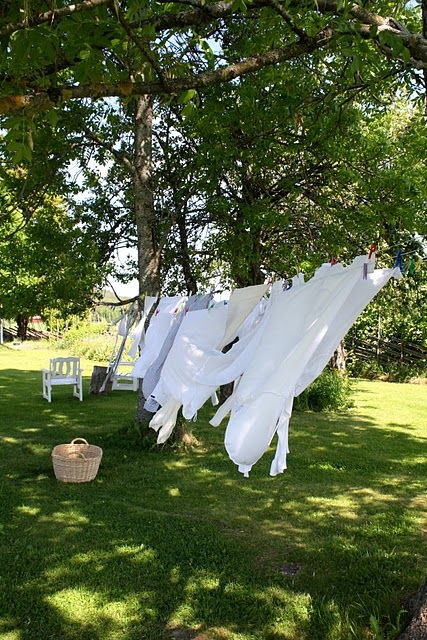 Line dry my sheets...yes, please!   Fond memories and gosh the clothes smelled so good.  Fresh.