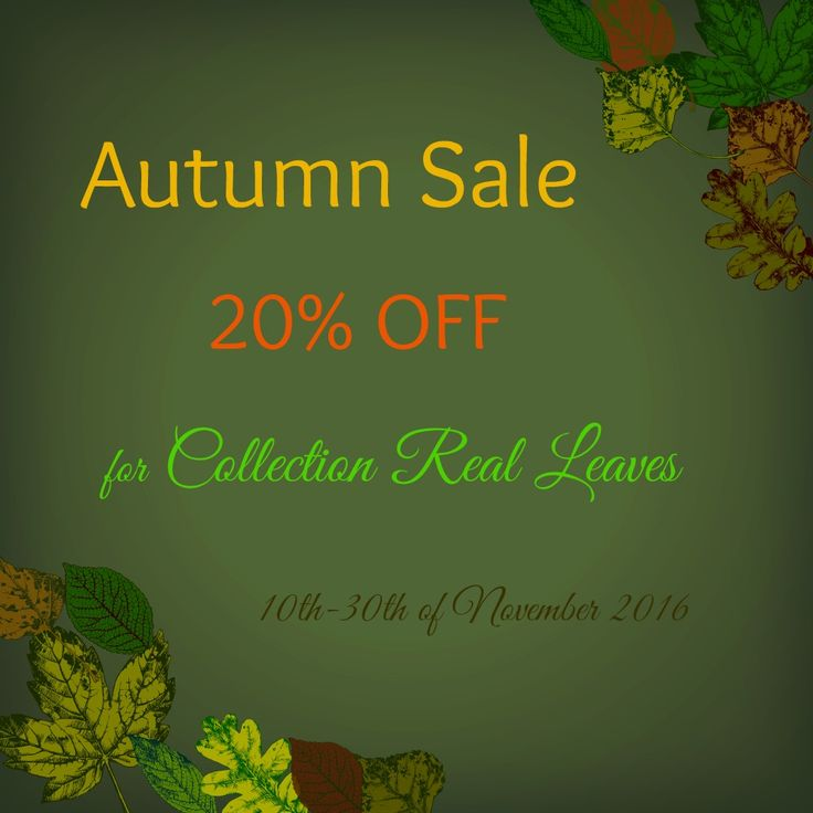 Autumn Sale!!! 20% OFF for Collection Real Leaves!