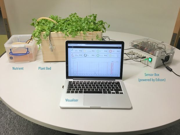 For this project, we built a small hydroponics system to demonstrate Quickbird's utility in hydroponics farming.