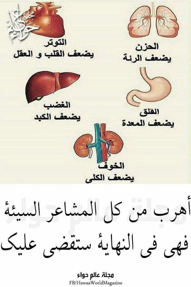 Pin By Azhar Alkenany On صور Health Arabic Love Quotes Blog