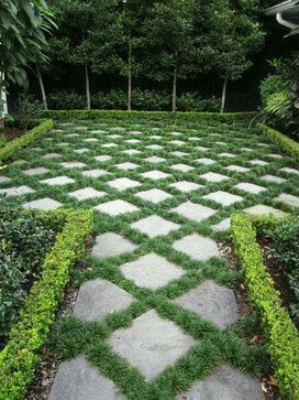 Cute greenspace formal boxwood