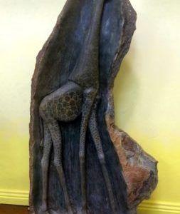 Giraffe - African Shona Sculpture