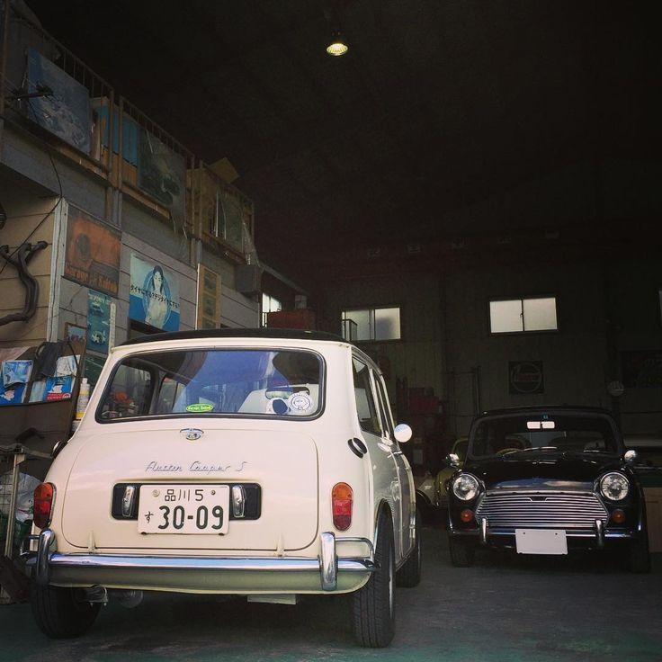 先週末のオイル交換時の。 MK-3ミニさんとパシャリ♪ 今度の週末はクーパーSさんでドライブ行きたいなー 今週も頑張りましょう(๑˃̵ᴗ˂̵) #classicmini #classicminicooper #austin #austinmini #mk1mini #jpmini #classiccar #historiccar #vintagecar #lovecars #クラシックミニ #オースチン #オースチンミニ #lovecars #bl #blミニ #mk3mini #minimk3 #minimk1 #BritishLeyland