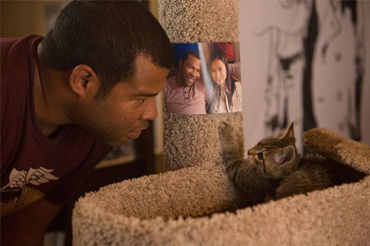 keanu 2016 movie : Photo Jordan Peele