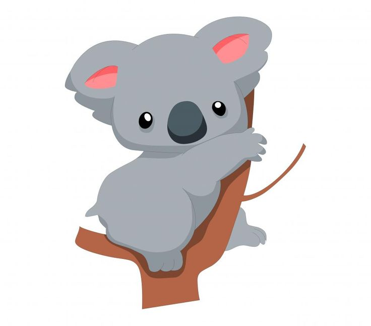 Cute Baby Koala Cartoon | wallmonkeys.com