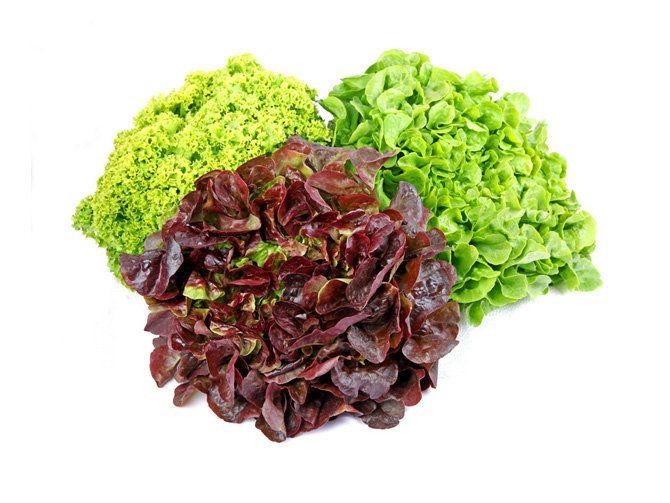 Länger haltbar als man denkt: Salat | Utopia.de