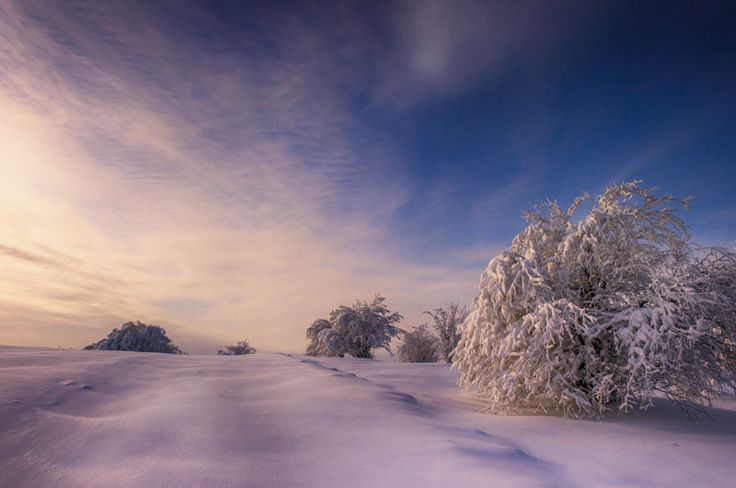 Winter_hdr by Catalin Petre on 500px