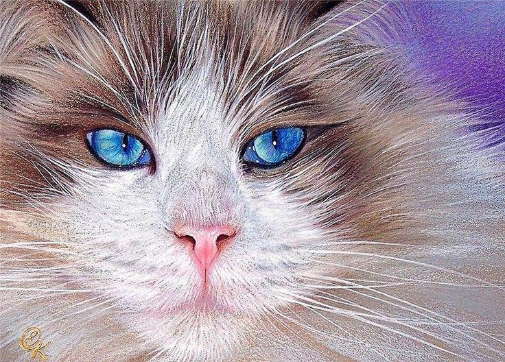 Elena Kolotusha. Cat art print, Cat art, Cat with blue eyes