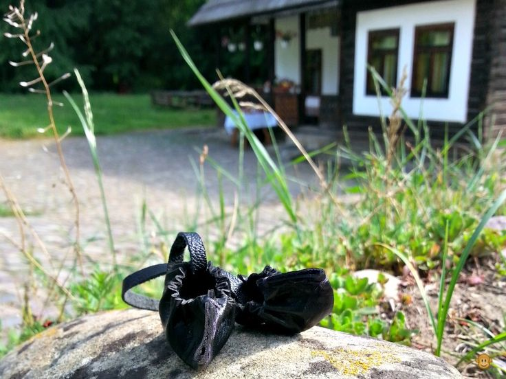 In nord, lumea de vis se ascunde in natura | Elena Pelmus-PR si timp liber