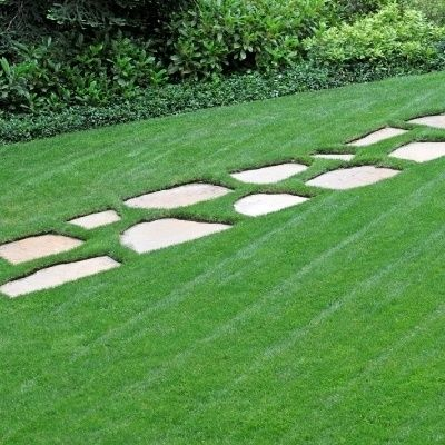 Overseeding: A Key to Beautiful Lawns || This is an awesome article on overseeding! It has everything you need to know about timing, types of grass seed, fertilizing and more info I didn't know about! #beautiful #lawn #goals