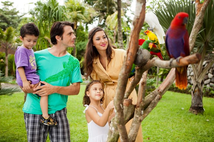 Animal encounter with our vibrant parrots at Bali Zoo