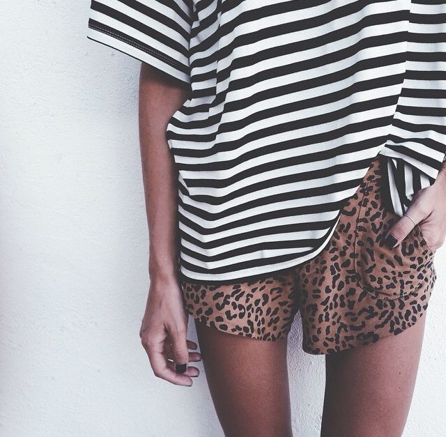 animal print and stripes