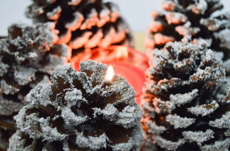 DIY: Christmas Decoration Pine Copes With Fake Snow http://www.glamourinabottle.com/